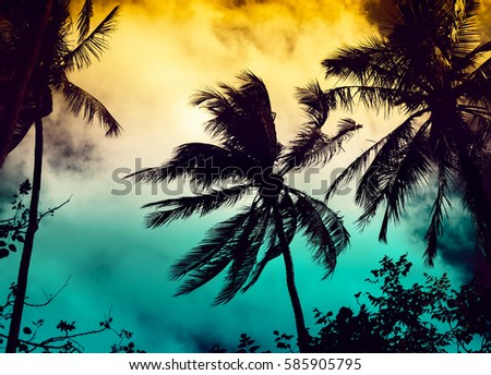 Silhouette coconut palm trees with sun light on sunset sky background. Travel concept. Photo from Kabi, Thailand. Vintage colors and boost up color processing. #585905795