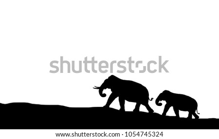 silhouette elephants in the landscape on  white background.