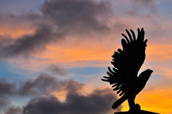 Silhouette hawk among sunset sky and color of light, famous attraction in Chumphorn, south Thailand