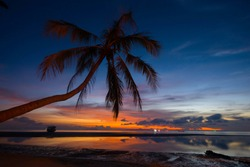 SILHOUETTE LEANING-COCONUT PALM TREE AT SEASIDE BEACH  , LIGHT-SHADOW REFLECTING ON WATER ,  LATE EVENING TIME TWILIGHT BLUE-ORANGE DARK CLOUD SKY BACKGROUND
