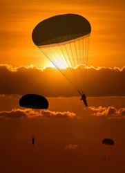 Silhouette Military parachute jump While Sunrise