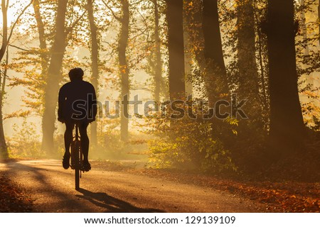 Silhouette of a biker in autumn on a sunny afternoon