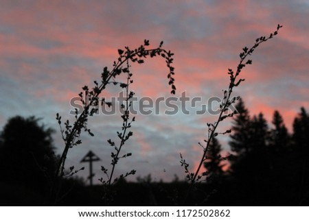 Silhouette of a blade of grass against the evening sky. Magnificent colors of the sky at sunset. Cross silhouette in the background. #1172502862