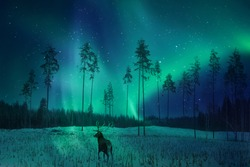 Silhouette of a deer in the winter forest against the backdrop of the northern lights. Winter artistic image. Aurora borealis.