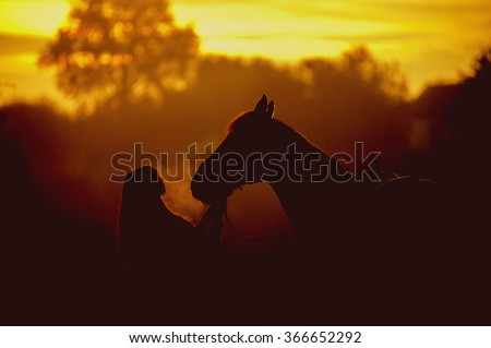 Silhouette of a girl and a horse on a background of dawn. Horse breathing vapor. A man kisses a horse
