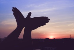 silhouette of a hand gesture like bird flying on a background sunset.