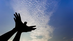 Silhouette of a hand gesture like bird flying on blue sky