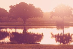 Silhouette of a lone tree and bench by lake pond water with reflection early at sunrise or sunset with   a retro vintage filter to feel inspirational rural peaceful meditative relaxing
