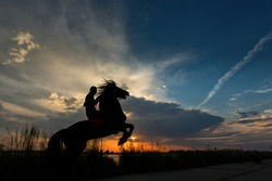 Silhouette of a man at sunset on his horse on two feet with colourful background