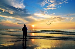Silhouette of a man looking to the birds flying when sun rising up