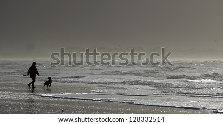 silhouette of a man playing with his dog on the beach