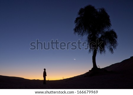 Silhouette of a man standing alone near a tree facing crescent during twilight.