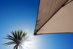 Silhouette of a palm tree against clear blue sky and parasol. Summer hot holiday vacation concept. Sun flare. Nobody