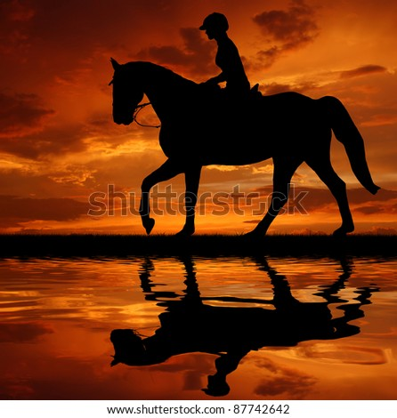 silhouette of a rider on a horse - stock photo