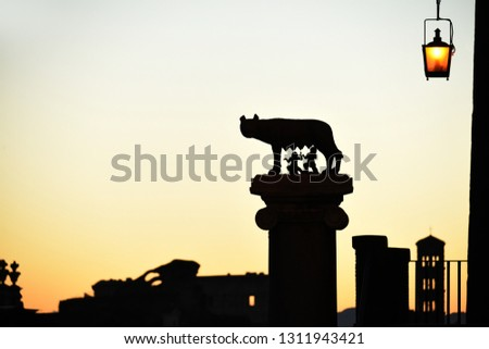 Silhouette of a she-wolf who nurtured the founders of Rome and the Roman roofs and bell towers against the background of the dawn sky. fantastic silhouette picture. Rome.