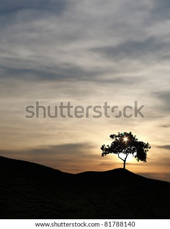 Silhouette of a solitary tree with sunbeam penetrating through its plume of leaves on top of a remote rural hill against a surreal candy colored sunset.