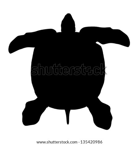 Silhouette of a Turtle Computer generated 3D illustration