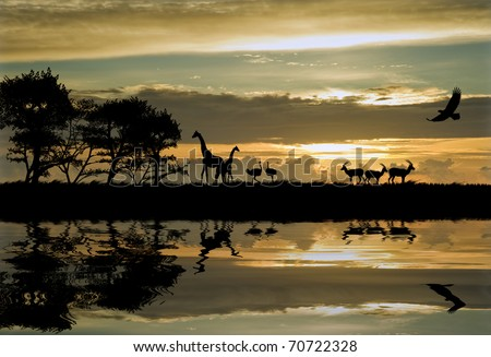 pictures of animals in africa. of animals in Africa theme