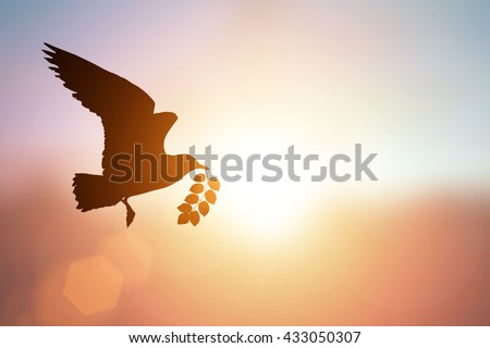 silhouette of bird carrying leaf branch and international day of peace 2016 #433050307
