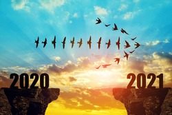 Silhouette of birds flying in arrow formation into the New Year 2021 at sunset.