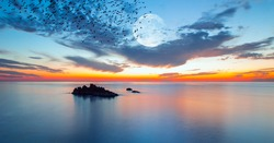Silhouette of Birds flying over the sea with full moon in the background at sunset - long exposure photo