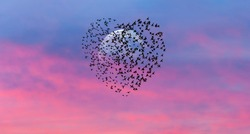 Silhouette of birds in shape of heart  flying in the sunset sky, full moon in the background