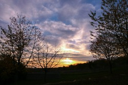 Silhouette of branch of tree at sunrise. Autumn or winter scene with dramatic sky with clouds.