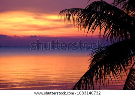 Silhouette of coconut palm tree with sunset background #1083140732