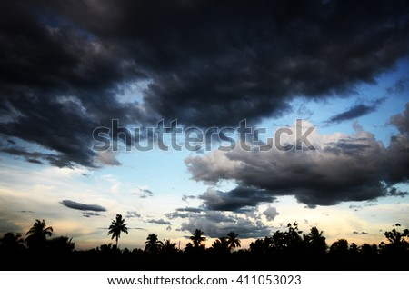 Silhouette of coconut tree in the the sky's overcast