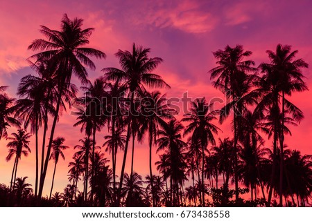 Silhouette of coconut trees against dramatic red sunset sky background. - Shutterstock ID 673438558