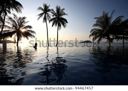 Silhouette of coconut trees at sunset, Koh Mak in Thailand