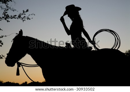 rearing horse silhouette. stock photo : Silhouette of