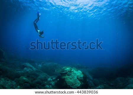 Silhouette of divers behind, a beautiful reef in the front. Male and female diver in Indonesia, Nusa Penida. #443839036