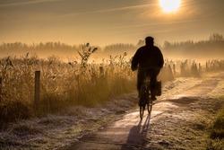 Silhouette of elder senior cyclist through hazy early morning rural landscape at sunrise