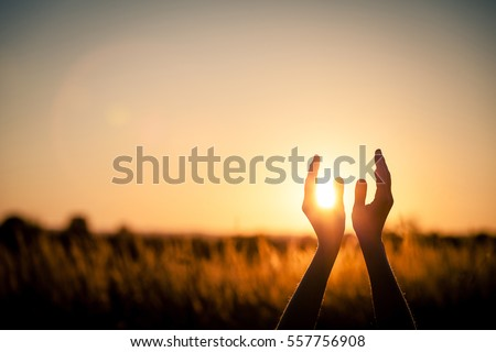 silhouette of female hands during sunset. Concept of life. #557756908