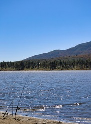 Silhouette of fishing rods by the edge of Lake Hemet and view of the forest across the lake.