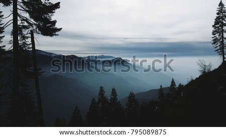Silhouette of foggy mountain ranges and pine trees on a winter day - the High Sierras of Northern California.