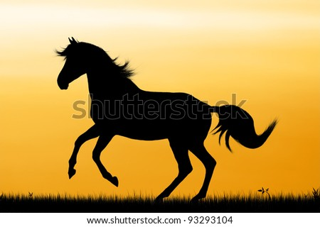 Galloping Horse Silhouette Silhouette of Galloping Horse