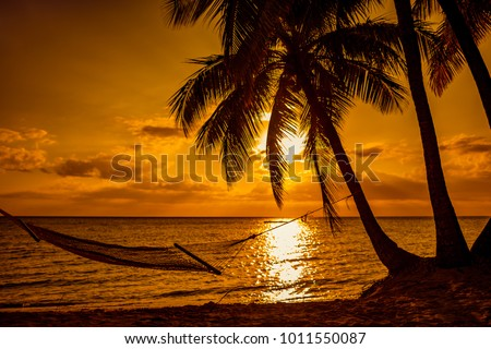 Silhouette of hammock and palm trees on a tropical beach at sunset, Fiji Islands