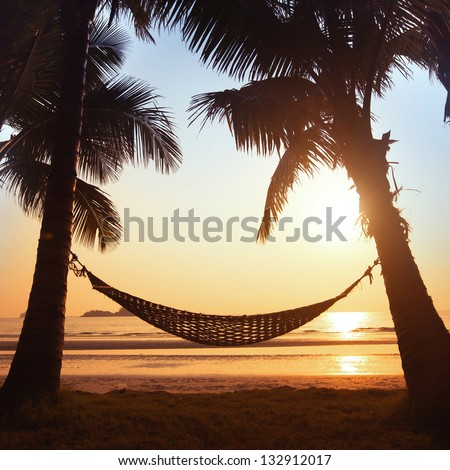 silhouette of hammock and palm trees on the beach