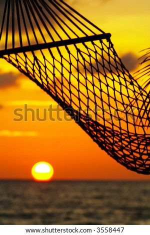 silhouette of hammock during tropical sunset