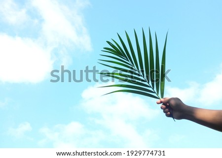 Silhouette of hand holding palm leaf on bright sky blue background with copy space. Palm Sunday celebration. Photo stock ©