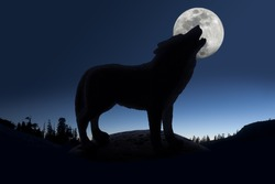 Silhouette of howling wolf against forest skyline and full moon.