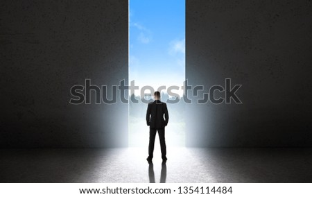 Silhouette of man against giant doorway. Space of infinite possibilities concept #1354114484