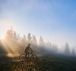 Silhouette of man in cycling suit riding bicycle near forest illuminated by morning sunlight. Male bicyclist cycling down grassy hill in the morning. Concept of sport, bicycling and active leisure.