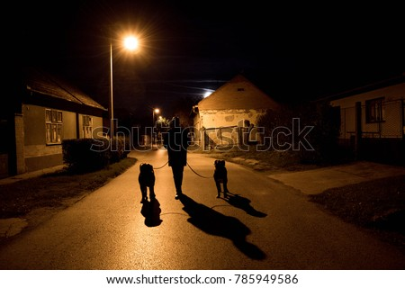 Silhouette of man walking with his dogs #785949586