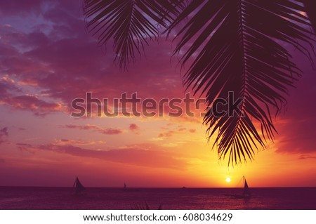 Silhouette of palm tree and sailboats at sunset, faded filter #608034629