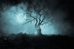 Silhouette of scary Halloween tree with horror face on dark foggy toned background with moon on back side. Scary horror tree with zombie and monster demon faces.