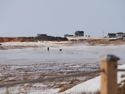 Silhouette of someone walking with dog on frozen pond, houses on top of a hill, Magdalen islands, Quebec, Canada