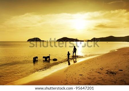 silhouette of son, mother and dog walking on beach